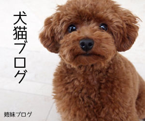 犬猫ブログ