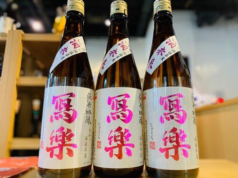 日本酒「写楽 酒未来」が入荷しました!