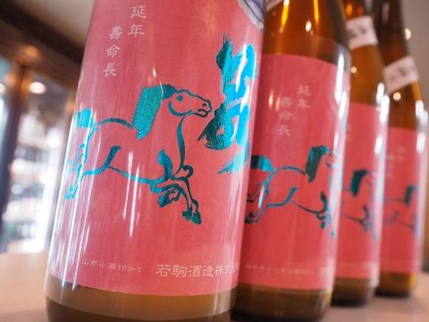 日本酒「若駒」愛山が入荷! これは恋人と飲みたい。若駒のラベルがちょっと特別!