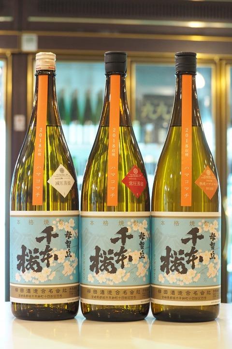 芋焼酎「千本桜 ハマコマチ」3種類入荷!