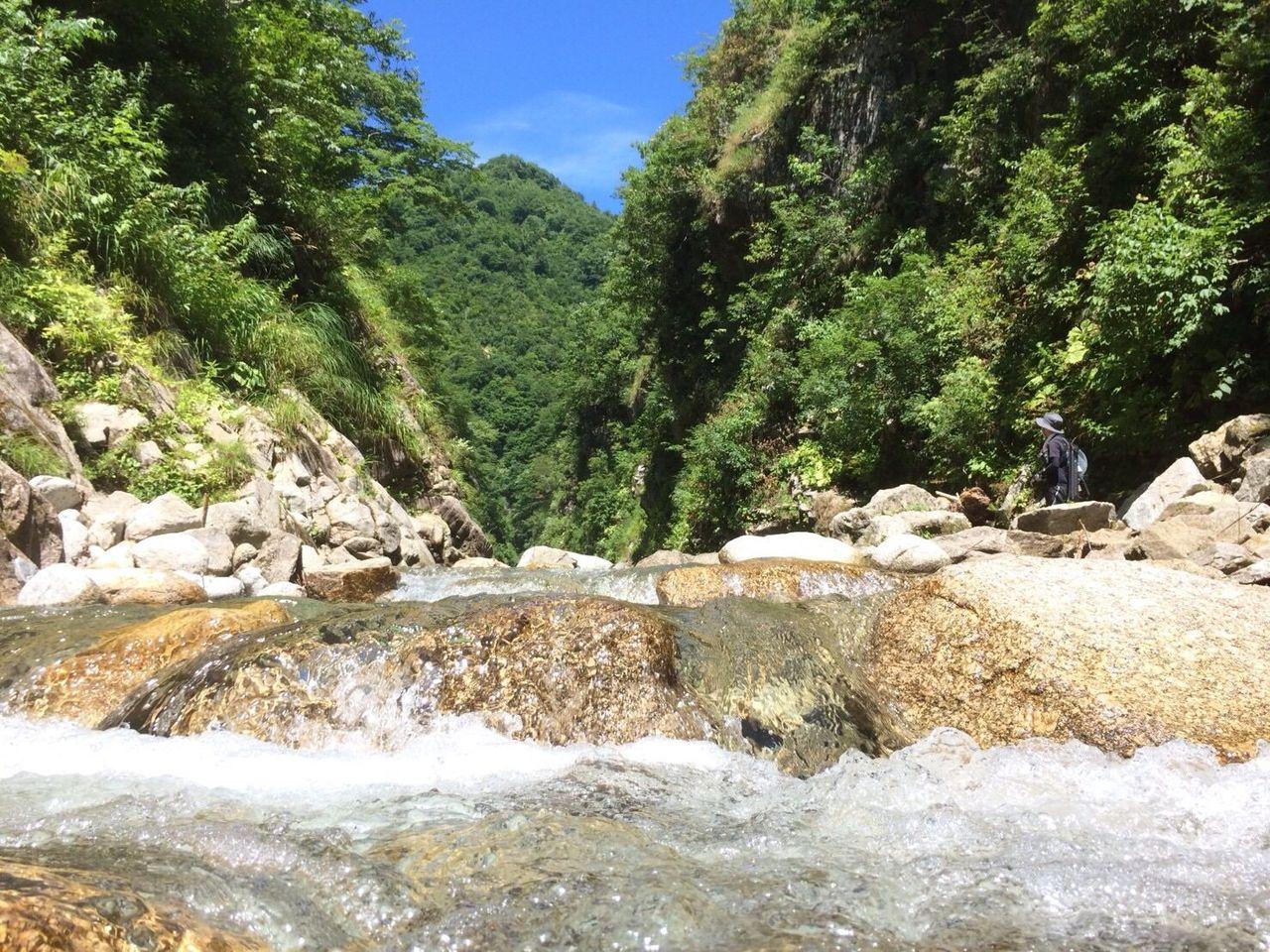 山の日に渓流釣り行ってきた