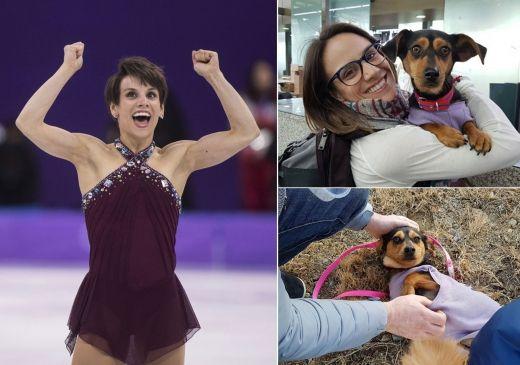 韓国で食用に育てられたイッヌ、平昌オリンピックのカナダ人選手が救助
