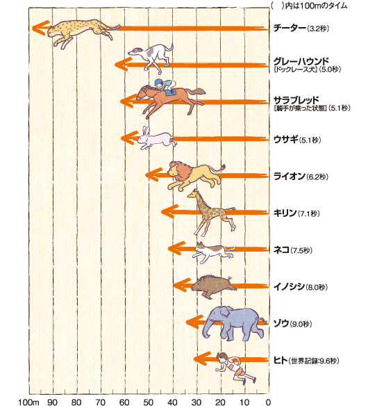 人間「うおおおおお!」→9.6秒 キリン「キリーンw」→7.1秒