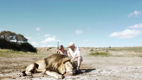【動画】ライオンを射殺し記念撮影 → 後ろから来た他のライオンに襲われる