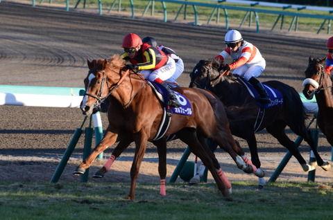 【競馬】昨年の目黒記念(GⅡ)を制したクリプトグラム 右前脚の浅屈腱炎を発症して引退