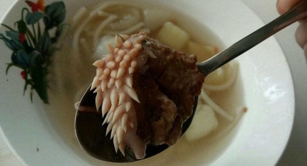 【ロシア】中学校の給食に謎の肉片