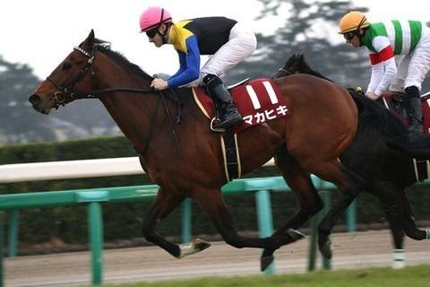【競馬】マカヒキは宝塚記念(GⅠ)へ 凱旋門賞の登録は見送り