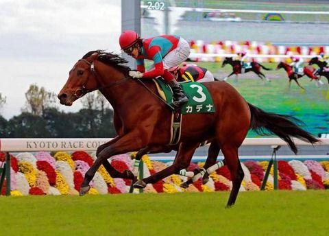 【競馬・日本ダービー(GⅠ)】ペルシアンナイトとカデナの複勝、どっちにしようか迷ってるんだが