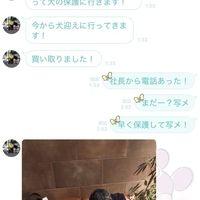 大金を積まれた?門りょうがキャバ嬢の一華綾を告発、虐待を受けた犬は無事保護され東京エースも解雇!