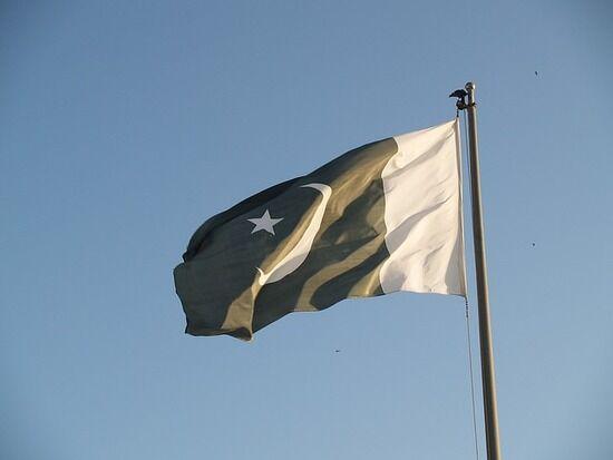【パキスタン】7歳のメイド、うっかりインコを逃して殺される
