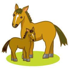 【競馬】昔「オルフェーヴルは池添!メジロライアンは横山!」今「この馬見込みあるな!外国人騎手!」