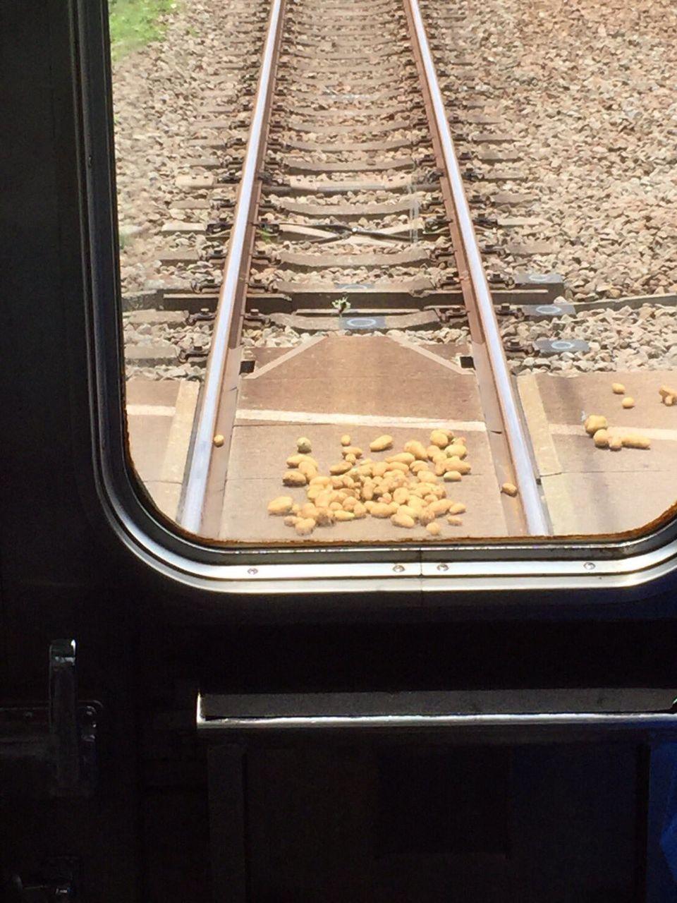 小田急線で年寄りが線路内に置き石ならぬ置き芋をしたため列車が停止 運転手が芋を撤去