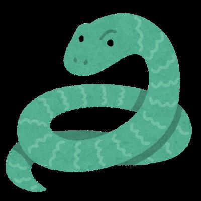ヘビ VS ヘビ