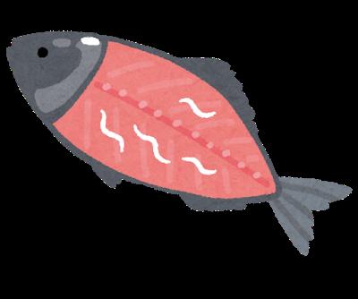 【悲報】鮭釣って刺身で食べたんだが腹がめちゃくちゃ痛い…