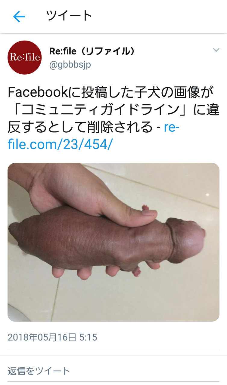 【悲報】明らかにアレにしか見えない子犬の画像、Facebookに削除される