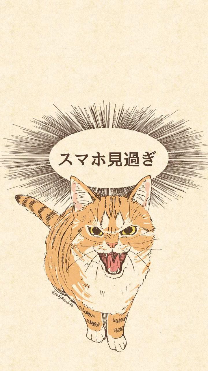 【超速報】スマホの壁紙で陽キャレベルが測れることが判明!!!