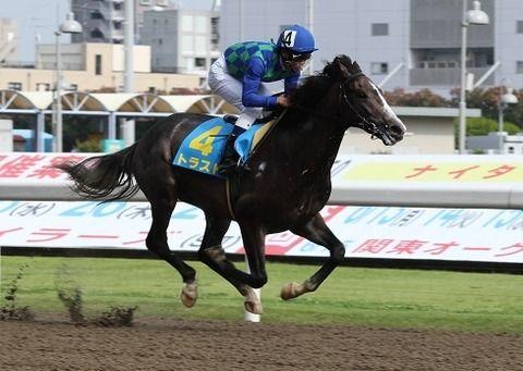 【競馬】NHKマイルC(GⅠ)にトラストが登録キターーーー!変則ローテでダービー参戦か?