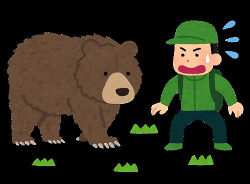 観光客「熊がいる~」 車から降りて野生のヒグマに2mまで接近し記念撮影