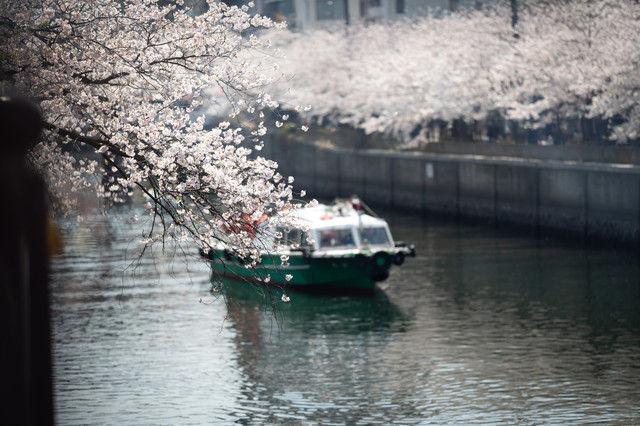 【朗報】小池百合子都知事、ついに「通勤ラッシュゼロ」公約実現に動く!!!「船で通勤」協力要請