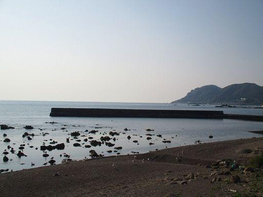 お魚海岸 (2)