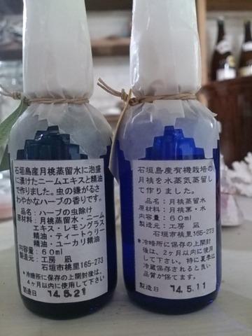 http://livedoor.blogimg.jp/ishigaki_budori/imgs/7/f/7f5c92ae-s.jpg