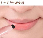 SS-550_lip