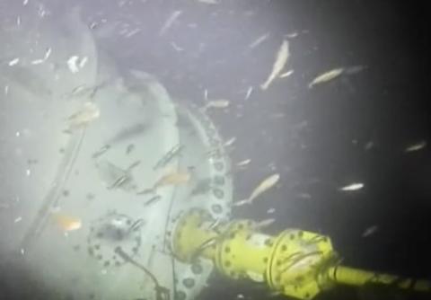 Microsoft、海底に設置した27.6PBのデータセンターのライブ映像を公開