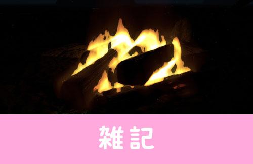【ついに登場】焚き火を眺めるだけのゲームがSteamに登場!!丸めた新聞紙や薪を置いてひたすら燃やすwww ほぁ