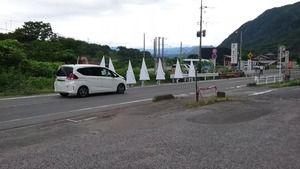【閲覧注意】道路脇を歩く、謎の白い三角形の行列がコチラ・・・