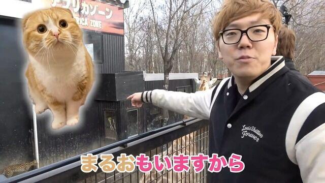 猫のまるおを失ったHIKAKINが精神崩壊してるようにしか見えない画像集wwwwww