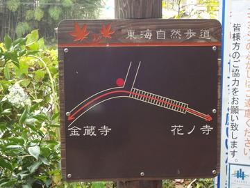 洛西・花の寺(勝持寺)へ続く道