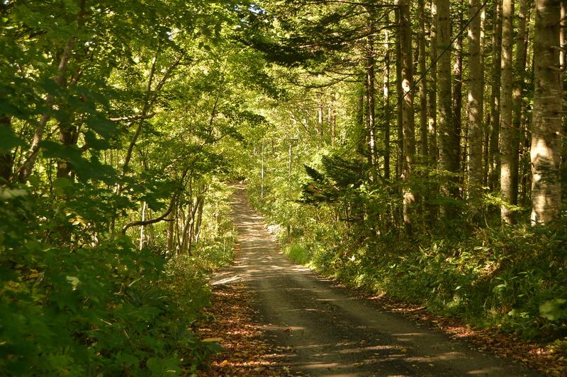 2016年09月25日 森林公園を撮り歩く 006