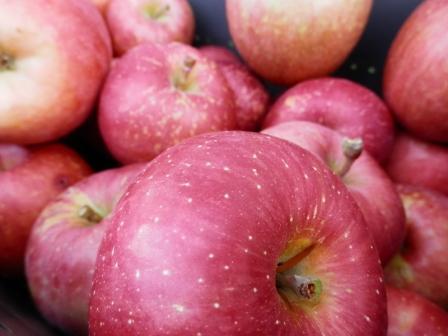 くずりんご