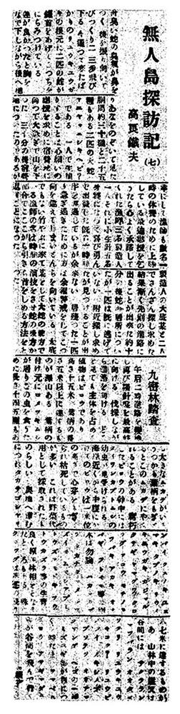 高良無人島探訪記06
