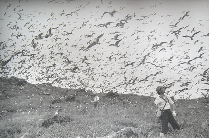 1939_尖閣調査_沖繩縣公文書館藏