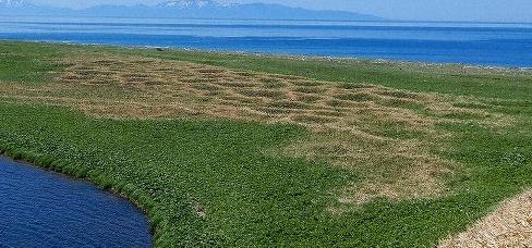 國後島竪穴住居20190525擴大