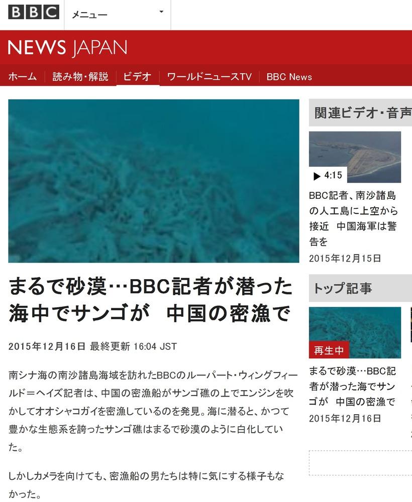 BBC珊瑚