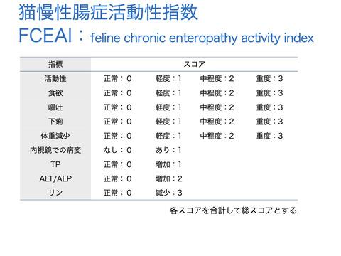 慢性腸症.001