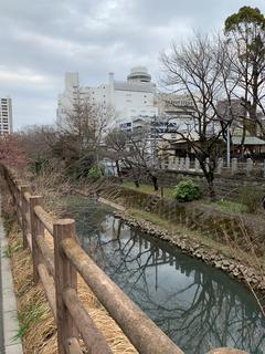 松戸神社のそばの川