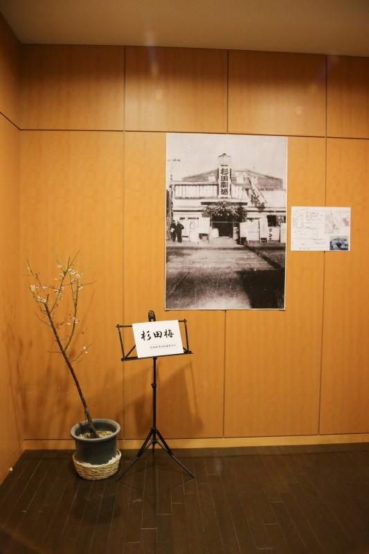 20190224杉田劇場の思ひ出sqs (11)