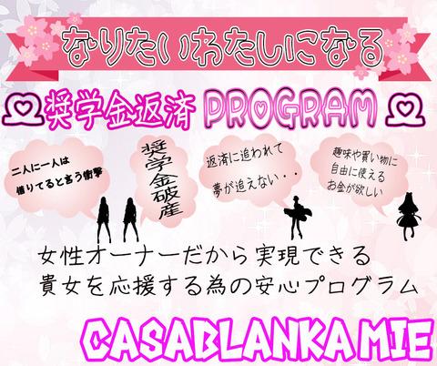 奨学金プログラム用-3