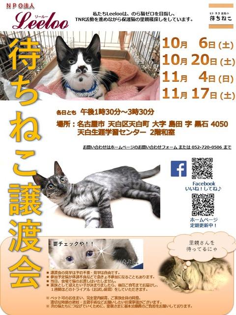 譲渡会ポスター2