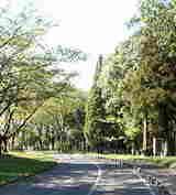 千葉市平和公園