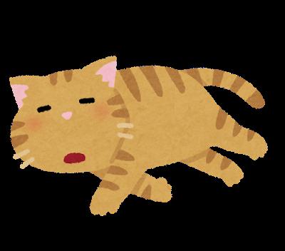 pet_darui_cat