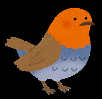 bird_komadori
