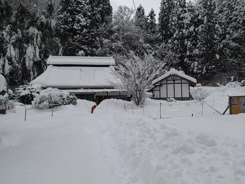 2017年2月の記録1 雪かき編