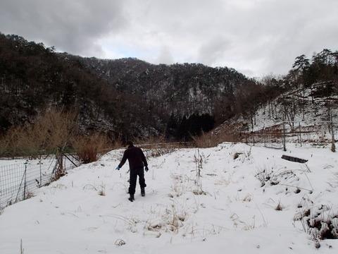 2017年12月の記録 冬の収穫編