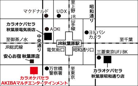 Akihabara_Multi_map