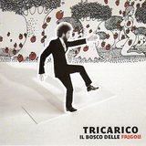 Tricarico/Il bosco delle fragole
