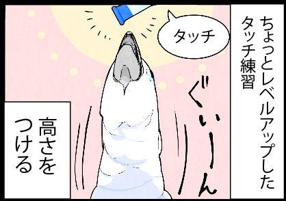 2017_0rt602